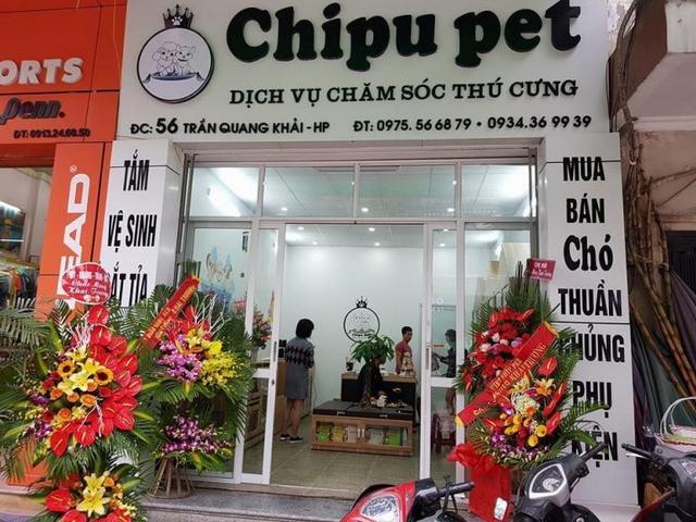 Khai trương cửa hàng của học viên - Chipu Pet
