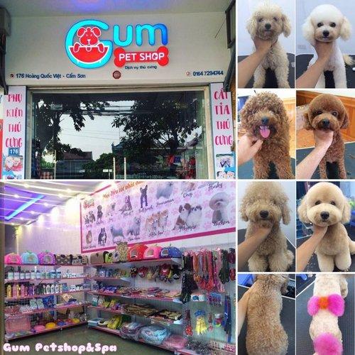 Cửa hàng của học viên - Gum Petshop & Spa