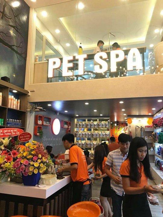 Pet Spa - cơ sở được tạo dựng từ chính học viên của chúng tôi